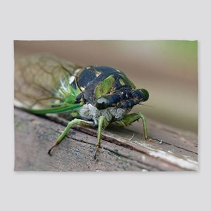 Cicada 5'x7'Area Rug
