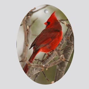 Male Cardinal Ornament 2(Oval)