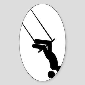 Trapeze-AAA1 Sticker (Oval)
