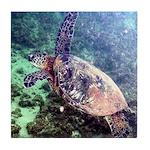 hawaiian green sea turtle Tile Coaster