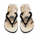 Pekingese Flip Flops
