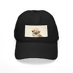 Pekingese Black Cap with Patch