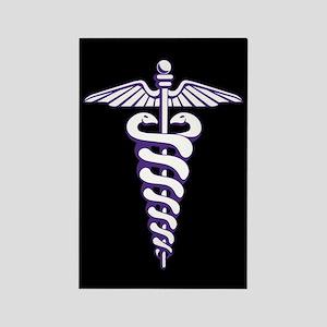 Phi Delta Epsilon Logo Rectangle Magnet