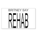 The Original Britney Say Rehab Sticker