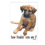 How Freakin Cute am I? Postcards (Package of 8)