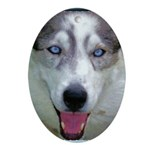 """""""Laughing Luna"""" Oval Ornament"""