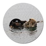 California Sea Otter Round Car Magnet