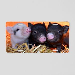 3 little micro pigs Aluminum License Plate