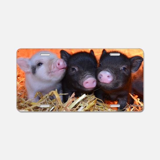 3 little micro pigs Aluminum License Plate