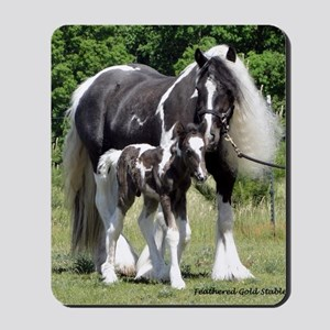 Champion Gypsy mare and colt Mousepad