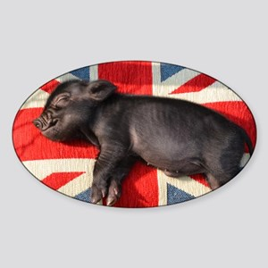 Micro pig sleeping on Union cushion Sticker (Oval)