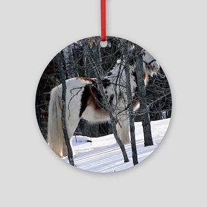 Gypsy Gelding in Winter Setting Round Ornament