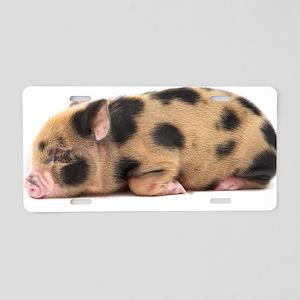 Micro pig sleeping Aluminum License Plate