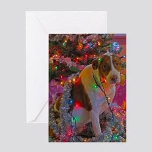 Merry Christmas Mixed Breed Greeting Card