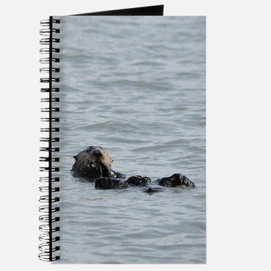 Alaskan Sea Otter Kindle Hard Case Journal
