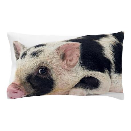 Pig Home Decor Cafepressrhcafepress: Pig Home Decor At Home Improvement Advice