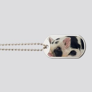 Micro pig chilling out Dog Tags