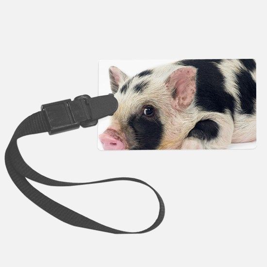 Micro pig chilling out Luggage Tag
