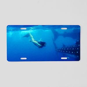 Whaleshark Magic Aluminum License Plate