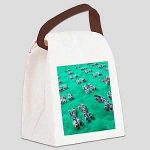 Human chromosomes, computer artwo Canvas Lunch Bag