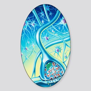 Nerve synapse Sticker (Oval)