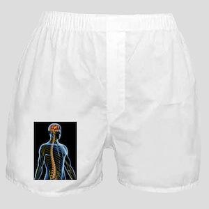 Nervous system Boxer Shorts