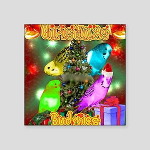"Christmas Budgies Square Sticker 3"" x 3"""