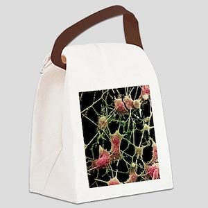 Nerve cells Canvas Lunch Bag