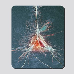 Nerve support cell, SEM Mousepad