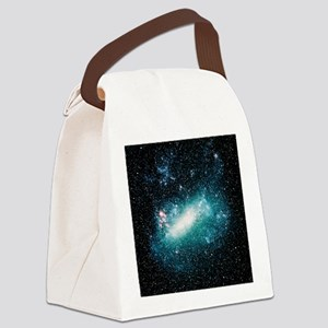 Optical image of the Large Magell Canvas Lunch Bag