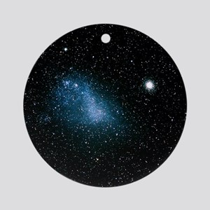 Optical image of the Small Magellan Round Ornament