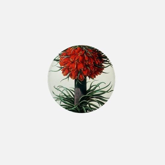 Crown imperial plant Mini Button