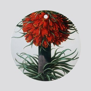 Crown imperial plant Round Ornament