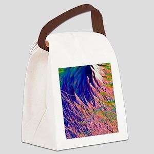 Electron flow Canvas Lunch Bag