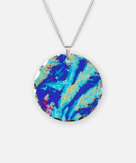 PLM of crystals of magnesium Necklace