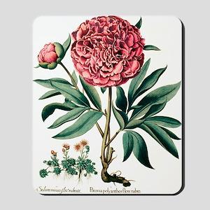 Peony flowers Mousepad