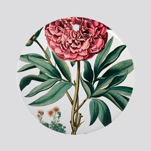 Peony flowers Round Ornament