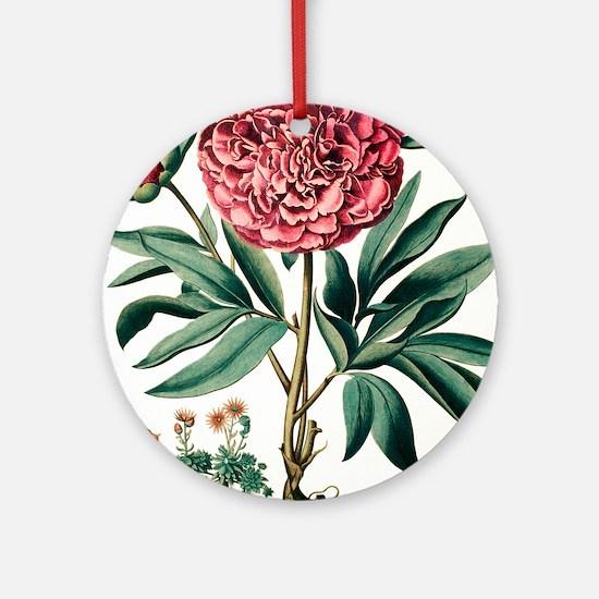 Peony flowers Round Ornament
