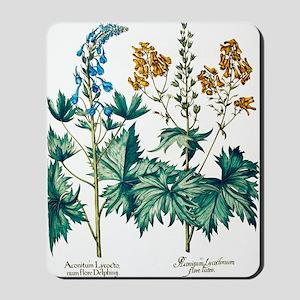 Monkshead flowers Mousepad