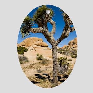 Joshua Tree Oval Ornament