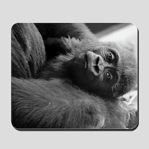 Baby Gorilla Mousepad