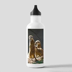 Meerkat Family Stainless Water Bottle 1.0L