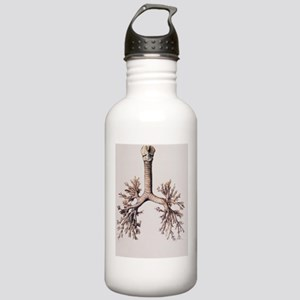 Trachea and lung bronc Stainless Water Bottle 1.0L