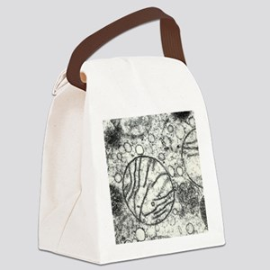 Transmission electron micrograph  Canvas Lunch Bag