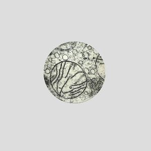 Transmission electron micrograph of mi Mini Button