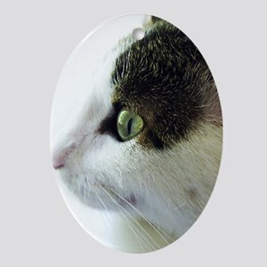 Green Eyed White Tabby Cat Starring Oval Ornament