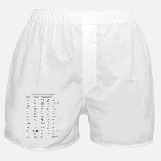 Evolution of cuneiform writing Boxer Shorts