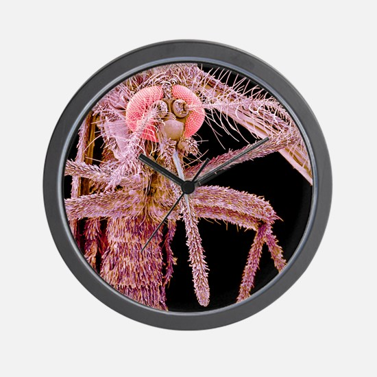 Asian tiger mosquito, SEM Wall Clock