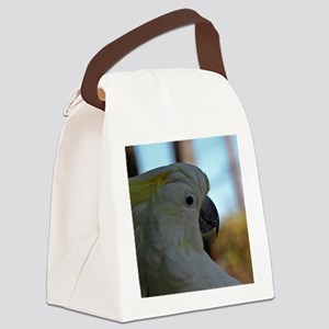 01 Canvas Lunch Bag