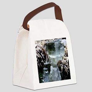 Aquamarine crystals Canvas Lunch Bag